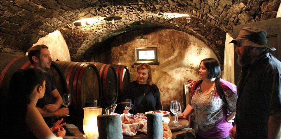 Degustacija v vinski kleti Vipava